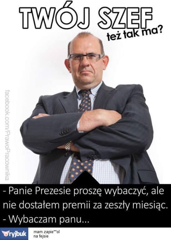 źródło: ryjbuk.pl